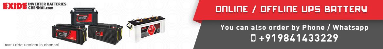 online offline UPS battery